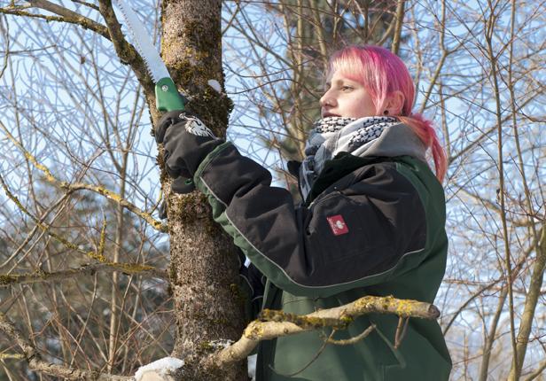 Landschaftsbau Baumschnitt