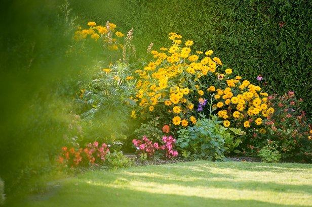 Gartengestaltung Blumenbeet in München