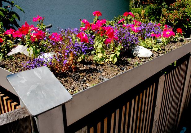 Beispiel Mülltonnenbox mit Bepflanzung