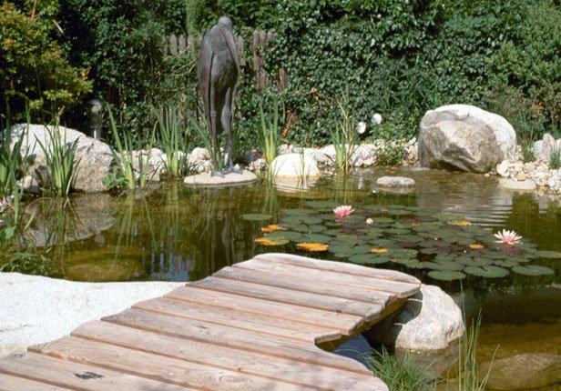Teich mit Seerosen und Holzsteg in München