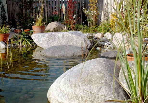 Gartenteich vom Gartengestalter München