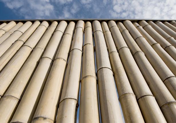 Bambuszaun bauen lassen