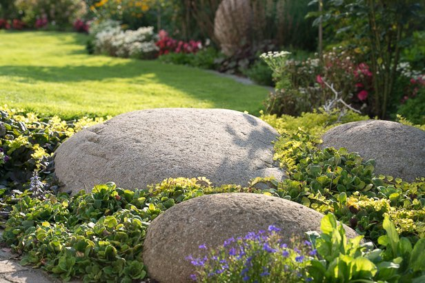 Gartenbau-9195-Kopie